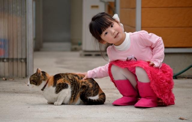 猫と子ども