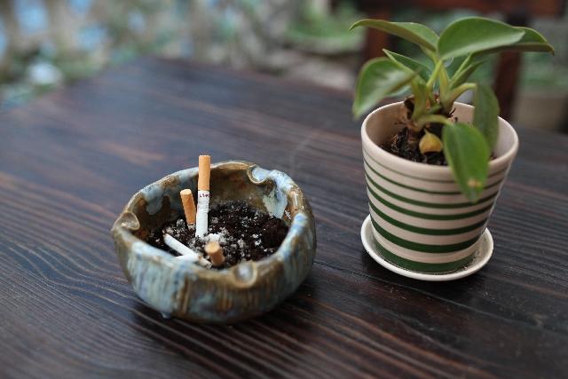 たばこと植木