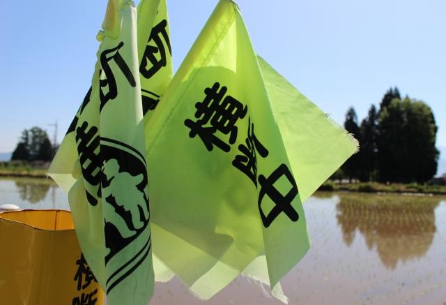 横断中の旗