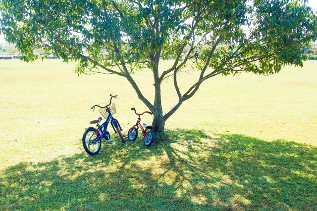 公園と2台の自転車